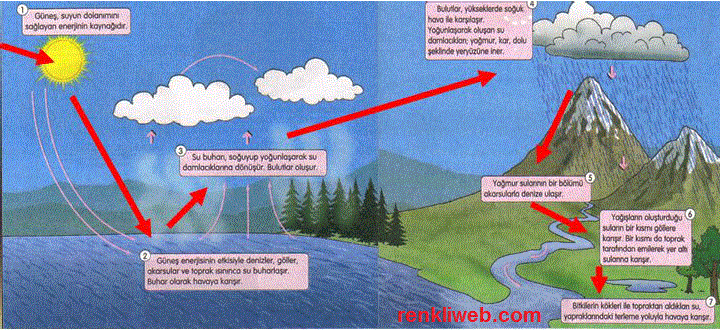 http://www.renkliweb.com/wp-content/uploads/2011/11/su-d%C3%B6ng%C3%BCs%C3%BC.gif